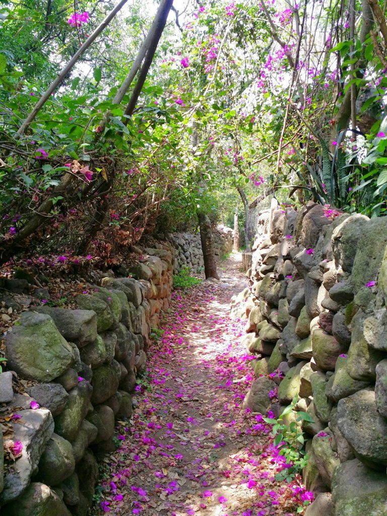 Vi uppskattade dock den färgglada naturen och stillheten! However, we appreciate the colorful nature and peace that surrounded the place!